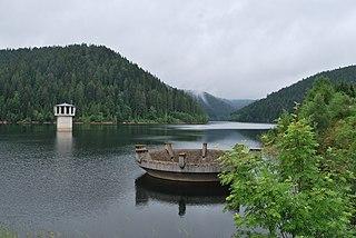 Kleine Kinzig Dam Dam in County of Freudenstadt