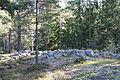 Stensättningar (Lid 47.2 och 47.1).JPG