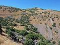 Steppenlandschaft (2).JPG