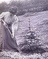 Suffragette Mary Phillips 1909.jpg