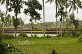 Sukorambi Botanical Garden, Jember, 2014-01-20 06.jpg