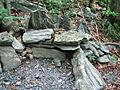Summit Trail bench at Elk Knob State Park.jpg
