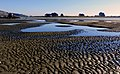 Sumner Beach Christchurch.FZ200 (14357477674).jpg