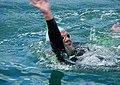 Swimmer Says Hi (26106762114).jpg