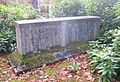 Syed Ameer Ali Grave Brookwood.jpg
