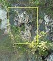 Tabon Caves Skull Detail - Palawan, Philippines.jpg