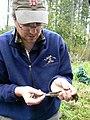 Tailing the sparrow (2460032426).jpg