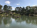 Takueichi Pond in Shukkei Garden 19.jpg