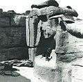 Taronga Park Zoo - 1924 (26483071283).jpg