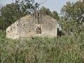 Tel Naama (Schwartz farm) 4.JPG