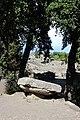 Templo dórico Pompeya 03.jpg
