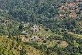 Terrace Farming in Nepal in Rakathum VDC-0375.jpg