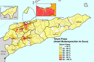 Austronesian language spoken on the island of Timor