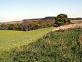The Backside of Fall Head Farm - geograph.org.uk - 422247.jpg