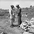 The British Army in Italy 1944 NA14447.jpg