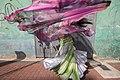 The Dancer, Calle Recavarren-8855293237.jpg