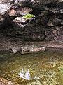 The Grotto 08.jpg