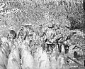 The Indian Army on the Western Front, 1914-1918 Q6945.jpg