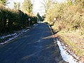 The road into Sapperton - geograph.org.uk - 1109633.jpg
