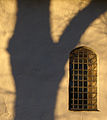 The shadow (3067953070).jpg