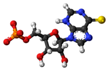Ball-and-stick model of the thioinosine monophosphate anion