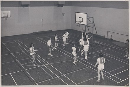 Physical Education Class -Basketball Thomond College of Physical Education students - Basketball (9524285378).jpg