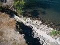 Timmerman Ferry site in Richland, Washington 4.jpg