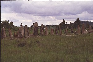 Stelae from the Tiya, Ethiopia