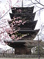 To-ji National Treasure World heritage Kyoto 国宝・世界遺産 東寺 京都041.JPG