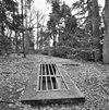 toegang tot de wildkelder in het parkbos - molenhoek - 20002571 - rce