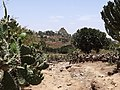 Trail Looking toward Pantaleon Monastery - Outside Axum (Aksum) - Ethiopia (8704893370).jpg