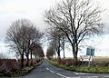 Tree-lined lane to Tarlton - geograph.org.uk - 1122854.jpg
