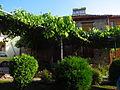 Trellis @ Villa Dihovo (14691969830).jpg