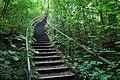Treppe zum Horn.jpg