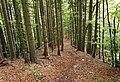 Triglav National Park - trail 7.jpg