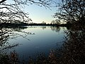 Tringford Reservoir - geograph.org.uk - 697591.jpg