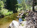 Tuolumne County, CA, USA - panoramio (2).jpg