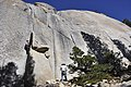 Tuolumne Meadows - Daff Dome - Guide Cracks - 2.JPG