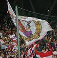 UEFA Euro League FC Salzburg gegen FC Basel 16.JPG