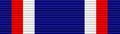 USA - TX State Guard Association Service Ribbon.png