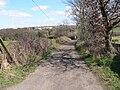 Un-paved track at Hay Green, Birdwell - geograph.org.uk - 152933.jpg