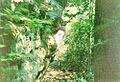 Underground12fdsafd.jpg