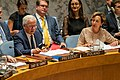 United Nations Security Council Session on Middle East Peace and Security (48587439457).jpg