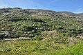 Valle del Jerte 28.jpg