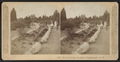 Vassar College grounds, Poughkeepsie, N.Y, by Littleton View Co..png