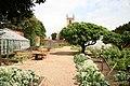 Vegetable garden - geograph.org.uk - 820930.jpg