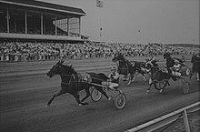 Vernon Racetrack