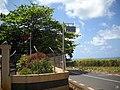 Vieux Grand Port PS (6218930245).jpg