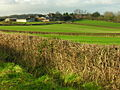View across fields west of Benthall Hall towards Benthall Hall Farm - geograph.org.uk - 324206.jpg