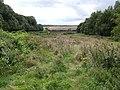 View down Windmill Hill - geograph.org.uk - 525816.jpg